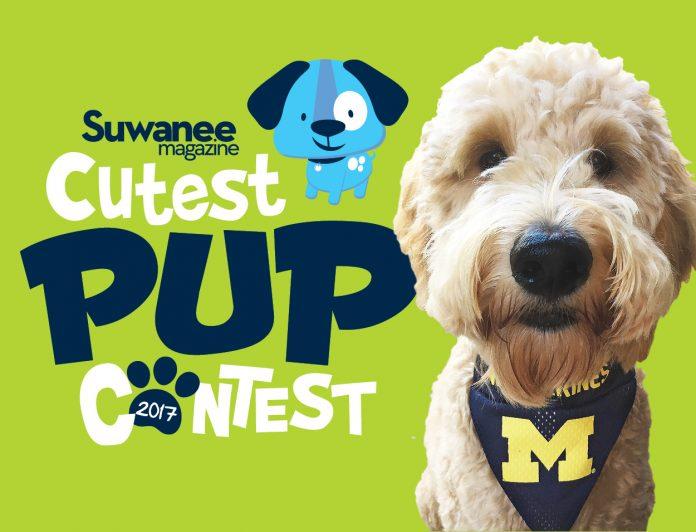 2017 Cutest Pup Contest winner